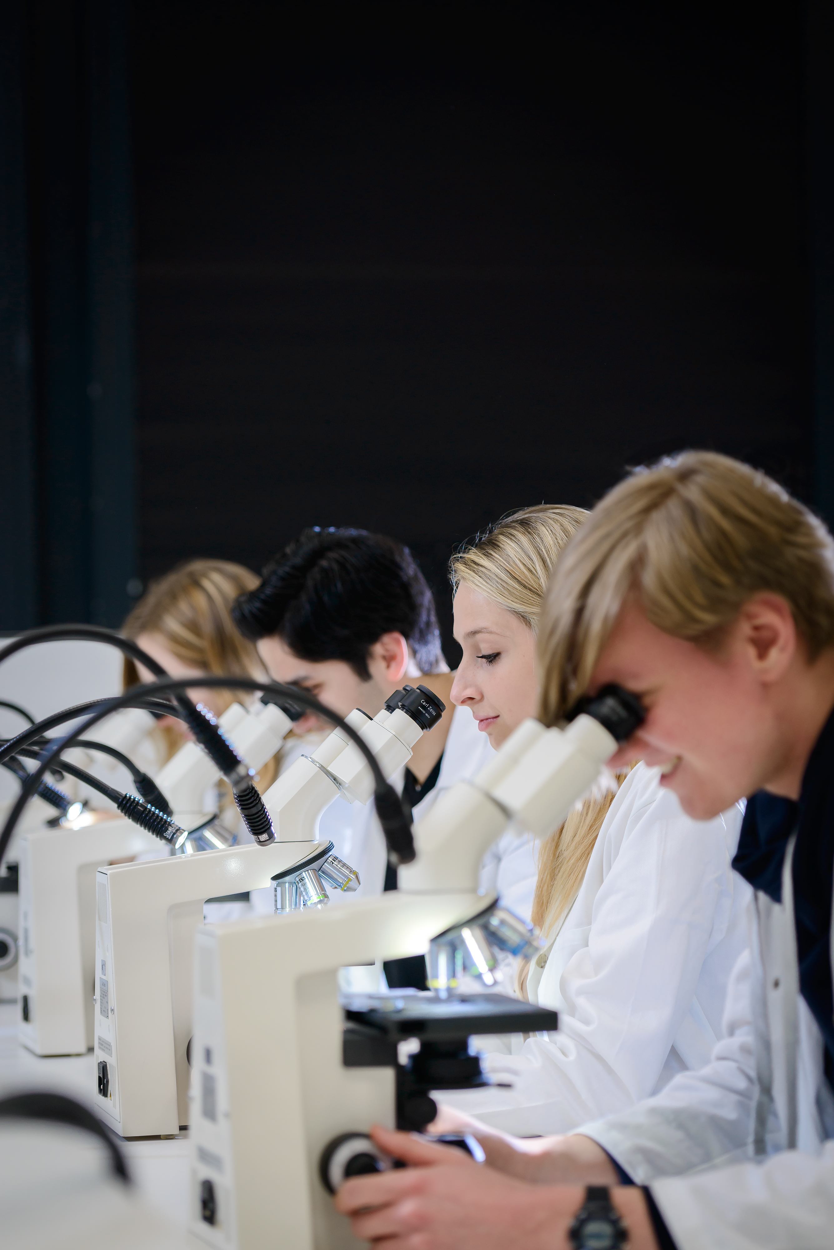 RUB---Mikroskop.jpg